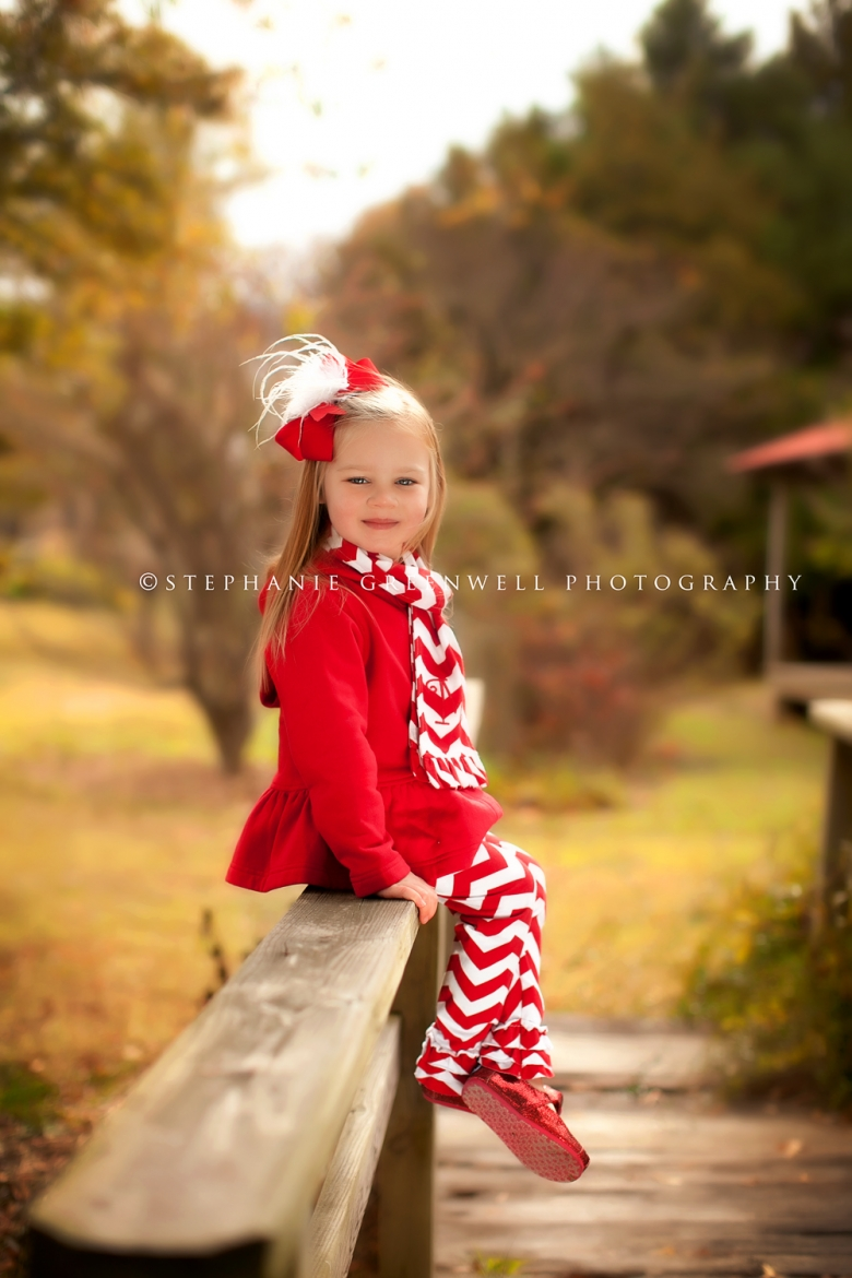 sarah faulkner west tennessee green frog child photography christmas southeast missouri photographer stephanie greenwell