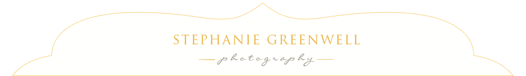 Southeast Missouri Child Baby Senior Photography | Stephanie Greenwell Photography logo