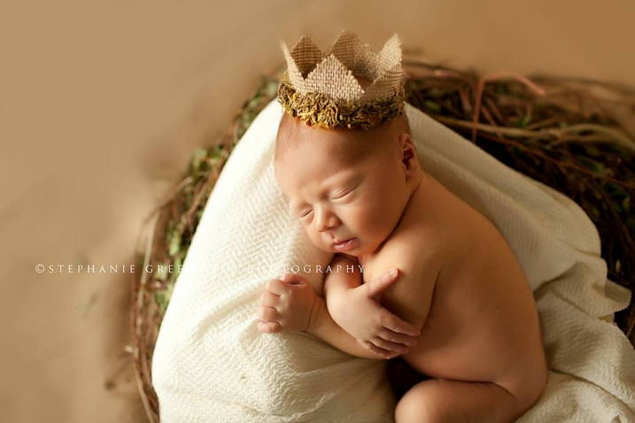 weston brown newborn redhead burlap moss crown nest southeast missouri photographer stephanie greenwell